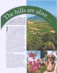The Hills are Alive, magazine feature on the euganean hills in Italia! magazine by jane gifford