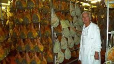 Italy, Emilia Romagna, Gianferrari Salumeria, traditional meats from Emilia Romagna. italian gourmet travel, your exclusive photographic travel guide to italy, photographer jane gifford